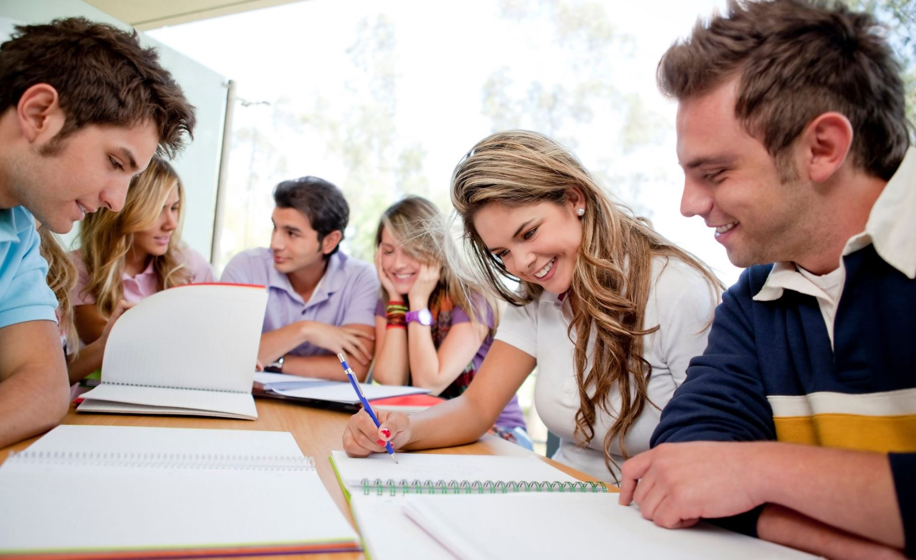 online writing help for high school students Writing essay help, buy essays cheap, purchase term paper, write dissertation, chemistry homework help online, research paper writer online, essays buy, buy a college paper for chea, can someone do my accounting homework, help writing papers, best essay site, custom law essays uk, accounting.